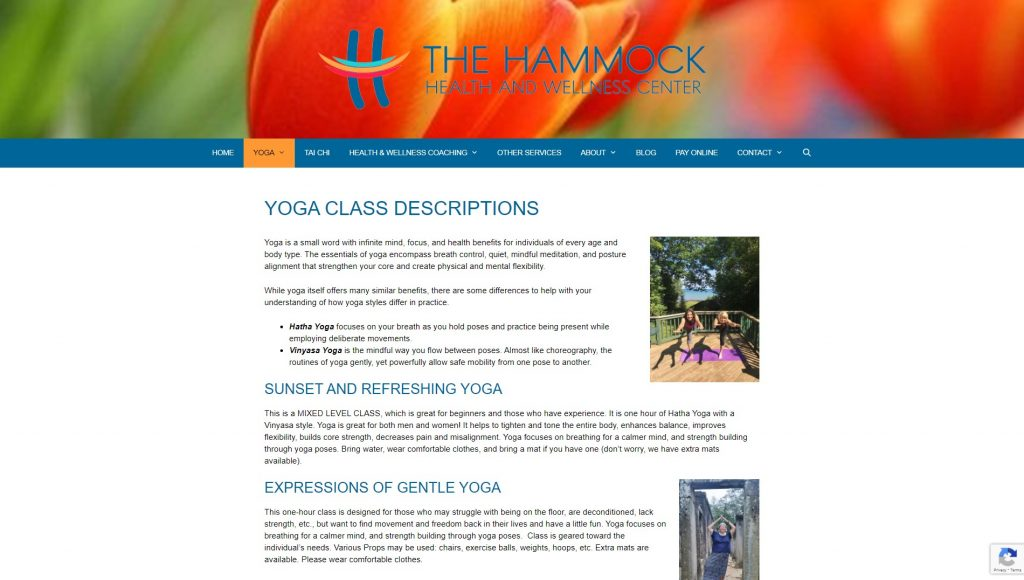 The Hammock Yoga
